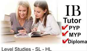 essay help introduction Extended Essay Chemistry HELP